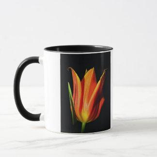 Orange Flammen-Tulpe Tasse