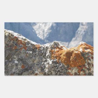 Orange Flechten, die auf Felsengesicht wachsen Rechteckiger Aufkleber