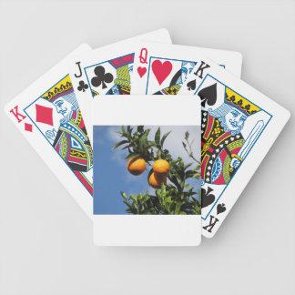 Orange Früchte, die am Baum gegen das Blau hängen Bicycle Spielkarten