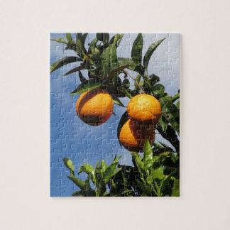 Orange Früchte, die am Baum gegen das Blau hängen Puzzle