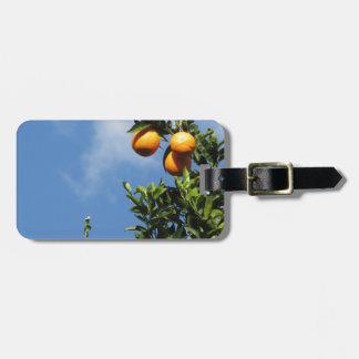 Orange Früchte, die am Baum gegen den Himmel Kofferanhänger
