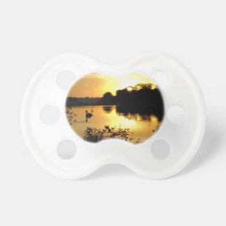 Orange Gelb des Sonnenuntergang-Swan Sees Schnuller