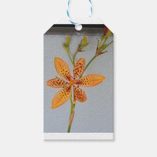 Orange gepunktete Iris genannt eine Geschenkanhänger