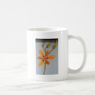 Orange gepunktete Iris genannt eine Kaffeetasse