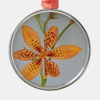 Orange gepunktete Iris genannt eine Silbernes Ornament