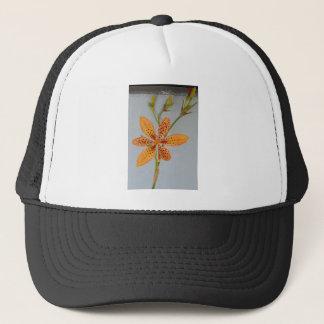 Orange gepunktete Iris genannt eine Truckerkappe