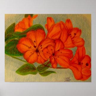 Orange Grafik der Blumen. .original durch Carol Ze Poster