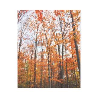 Orange Herbst-Wald Leinwanddruck