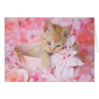 Orange Kätzchenloki-Rosa leeres Mit Blumennotecard Karte