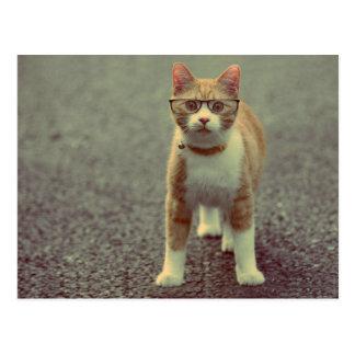 Orange Katze mit Gläsern Postkarte