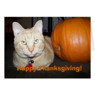 Orange Katze mit Kürbis-glücklicher Karte
