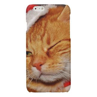 Orange Katze - Weihnachtsmann-Katze - frohe