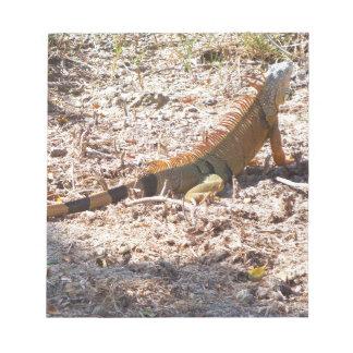 Orange Leguanjagden Notizblock