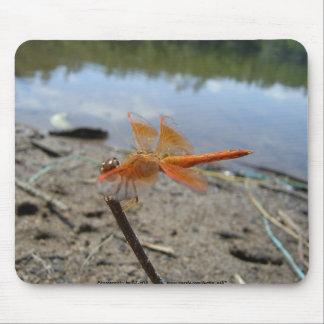 Orange Libelle Mousepad