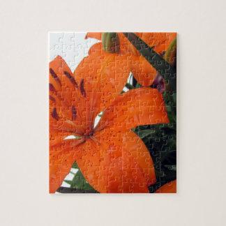 Orange Lilie Puzzle
