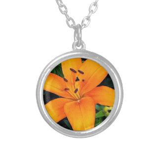 Orange Lilie Versilberte Kette