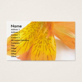 Orange Lilie Visitenkarte