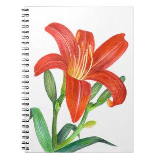 Orange Lilien-botanische Illustration Notizblock