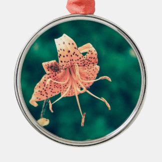Orange lilly crossprocess4 silbernes ornament