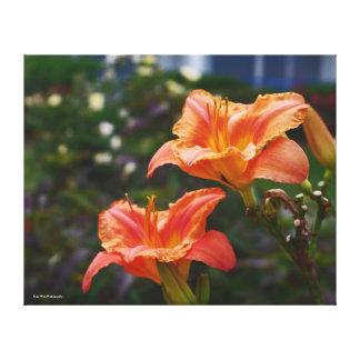 Orange Lilys Leinwanddruck