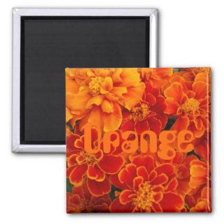 Orange Quadratischer Magnet