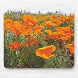 Orange Mohnblumen-Feld der Blumen Mauspad