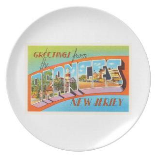 Orange New-Jersey NJ Vintage Reise-Postkarte Flacher Teller