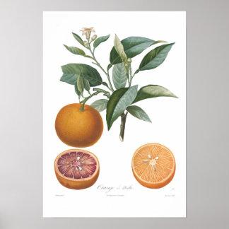 Orange, Orange de Malte Poster