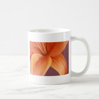 Orange Orchidee Tasse