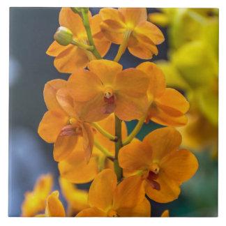 orchideen blume fliesen orchideen blume keramikfliesen. Black Bedroom Furniture Sets. Home Design Ideas