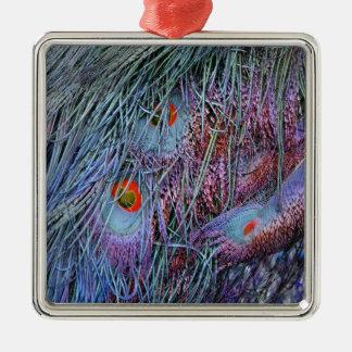 orange Pfaufedern des Vulkans Quadratisches Silberfarbenes Ornament