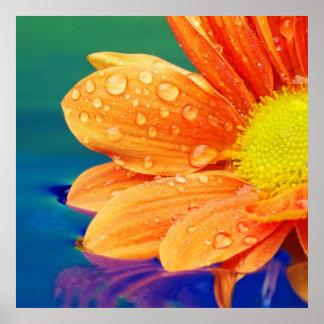 Orange Regentropfen-Fotografie-Plakat