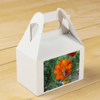 Orange Ringelblumen-Bienen-Blume Geschenkschachtel