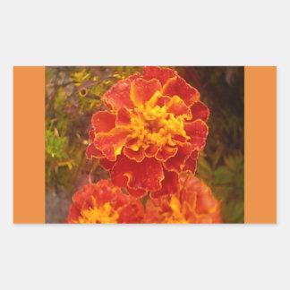 Orange Ringelblumen-Fall-Morgen-Tau-Aufkleber Rechteckiger Aufkleber