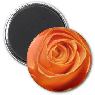 Orange Rose in nahem hohem Runder Magnet 5,7 Cm