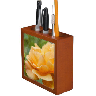Orange Rose Painterly Stifthalter