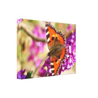 Orange Schmetterling auf Leinwand