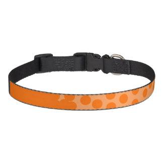 Orange sprudelt Spaß-Kragen Haustierhalsband