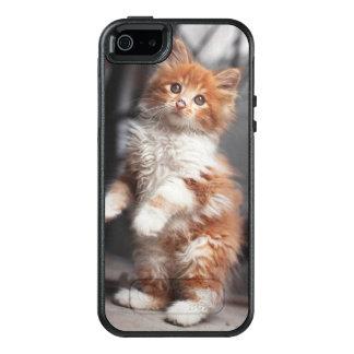 Orange Tabby-Kätzchen OtterBox iPhone 5/5s/SE Hülle