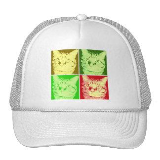 Orange Tabby-Katze Kult Kappen