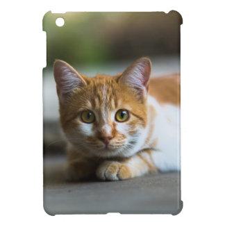 orange Tabbykatzenporträt iPad Mini Hülle