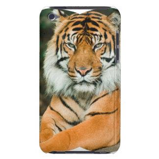 Orange Tiger iTouch Kasten iPod Case-Mate Case