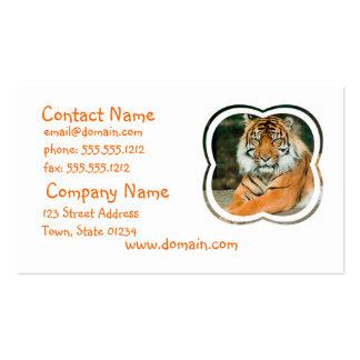 Orange Tiger-Visitenkarte