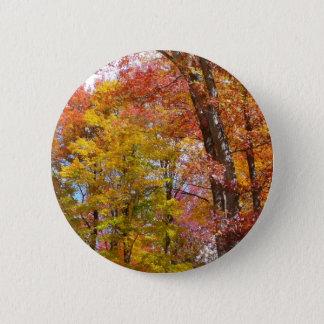Orange und Gelb-Fall-Baum-Herbst-Fotografie Runder Button 5,1 Cm