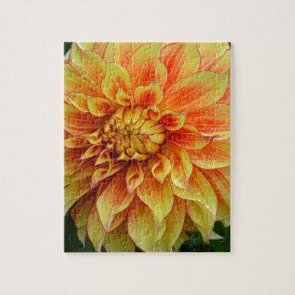 Orange und gelbe Dahlie-Blume Puzzle