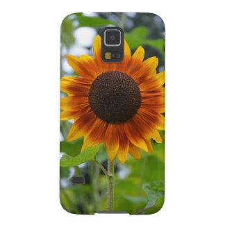 Orange und gelbe Sonnenblume Samsung S5 Cover