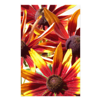 Orange und gelbes Coneflowers Briefpapier