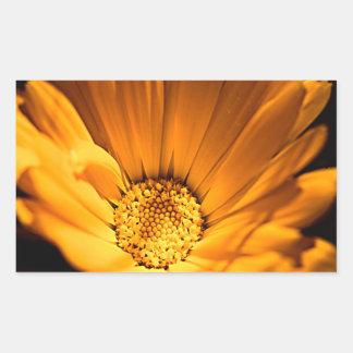 Orange und gelbes Gerbera-Gänseblümchen Rechteckiger Aufkleber