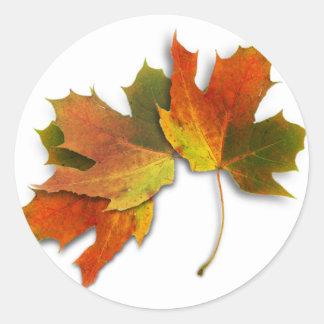 Orange und goldenes Herbst-Blätter Runder Aufkleber