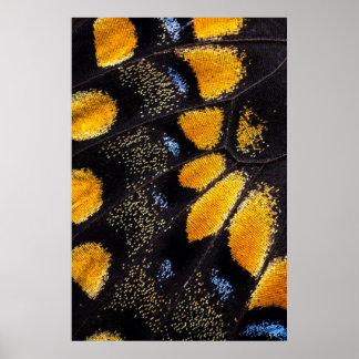 Orange und schwarzer Schmetterlingsflügel Poster